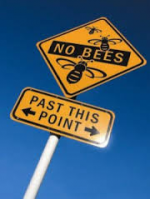Bees know no borders